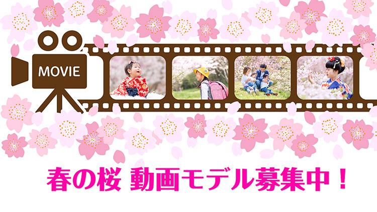cutie-photo_spring